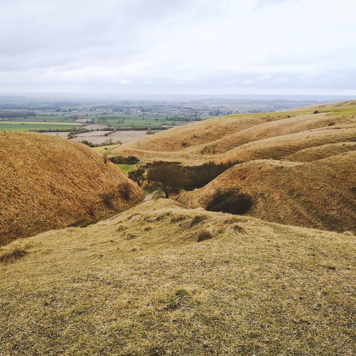 Finding painting locations, Roundway Down, Devizes